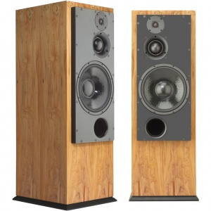 ATC SCM100 ASLT Active Floorstanding Speakers